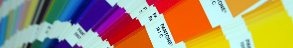 Pantone Color System Color Matching Book | Biondo Art
