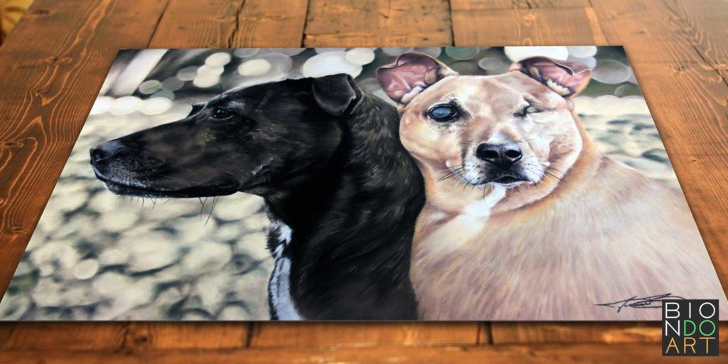 Quincy Ciara Dog Portrait - Soft Pastel Drawing